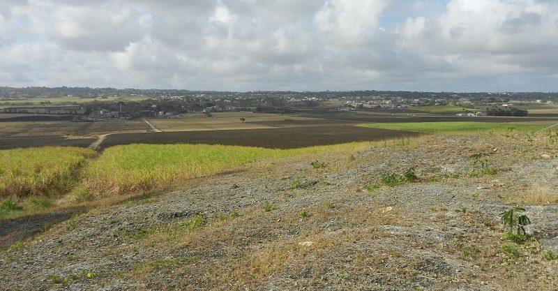 5 Stepney Ridge
