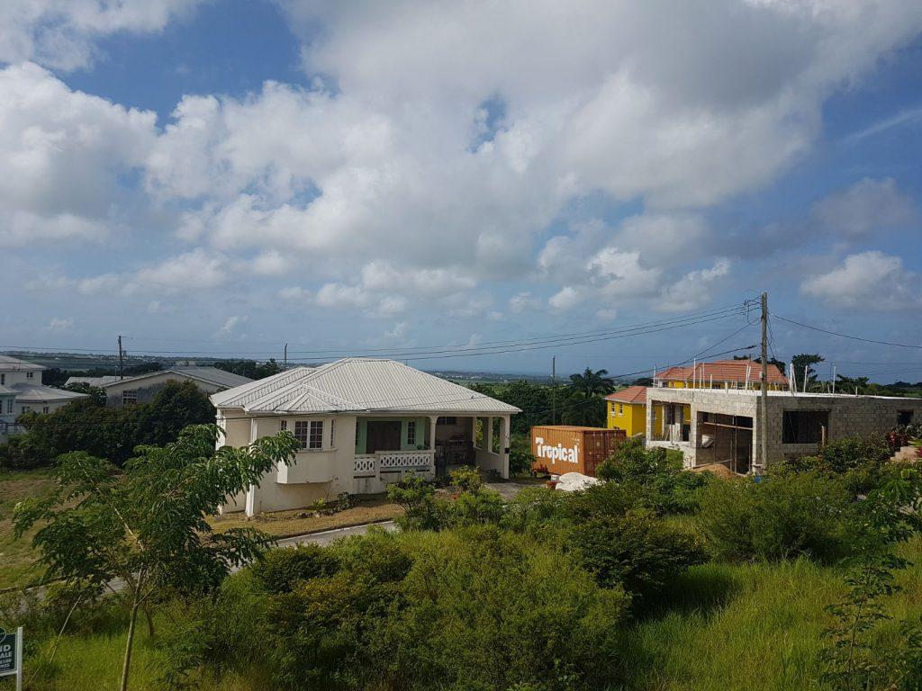 #50 Orange Estate