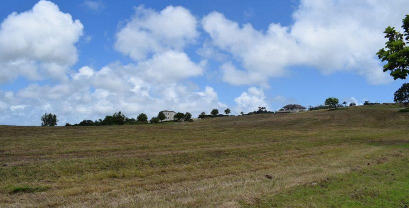 J21 Apes Hill